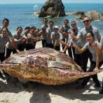 For the turtle release activity at the secret beach held to celebrate the hotel's yearly anniversary